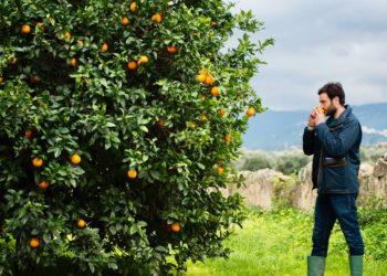 Go to article Officina Mps: Biorfarm vince il premio innovazione sostenibile!