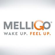Melligo_logo1