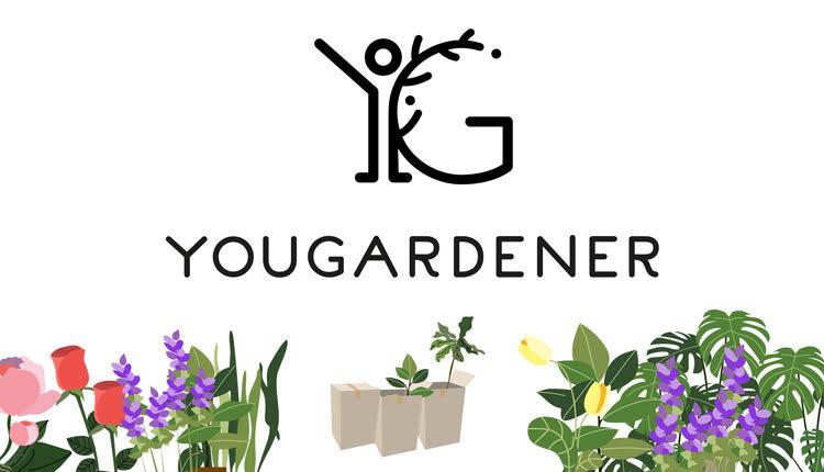 Yougarderner