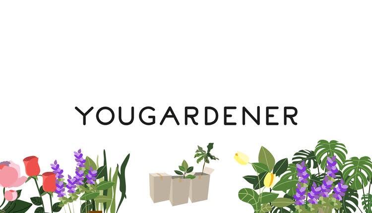 Yougardener_bg1
