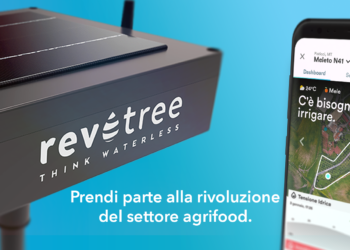 Go to article Revotree stringe nuovi accordi commerciali e industriali strategici