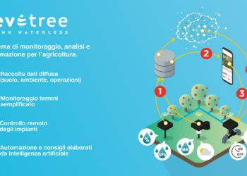 Go to article Revotree è tra le 20 finaliste dell'Open Summit 2019 e prolunga la sua campagna