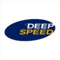 DeepSpeed 2