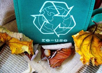 Vai agli articoli Da Nestlé alle big Oil&Gas, le aziende investono sempre più nella green economy!