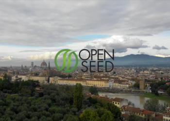 """Go to article Open Seed: """"Ecco perché conviene investire nelle startup sfruttando il nostro know-how""""!"""