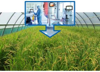 Go to article Biotech, Transactiva prepara la produzione su larga scala!